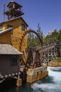 Disney Mine