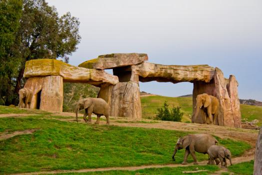 Elephanthenge