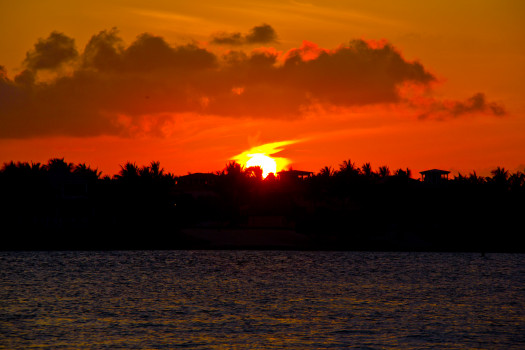 Key West Silhouette Sunset