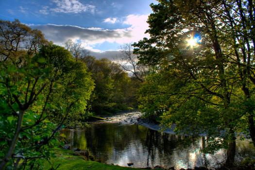 River Vyrnwy